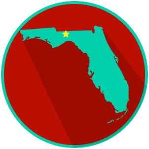 View Florida State and Local Government
